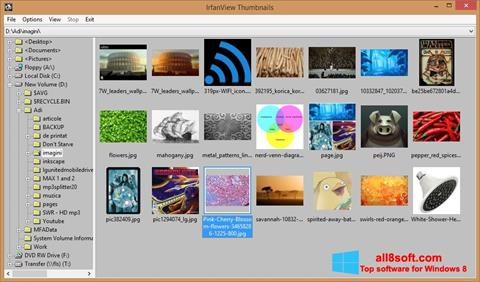 Screenshot IrfanView untuk Windows 8
