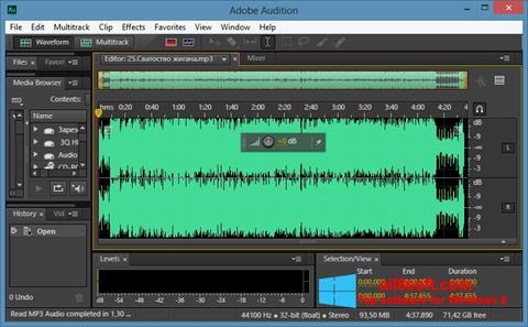 Screenshot Adobe Audition CC untuk Windows 8