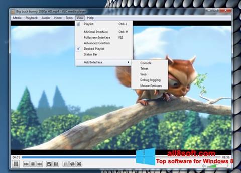 Screenshot VLC Media Player untuk Windows 8